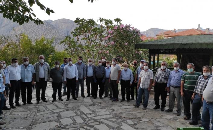 Karaman'da Zeytin Üretimi Artıyor