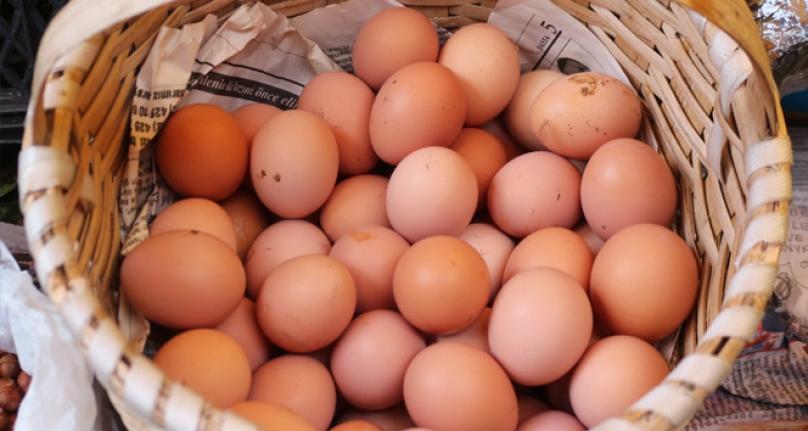 Karaman'da Yumurta Fiyatları Artıyor