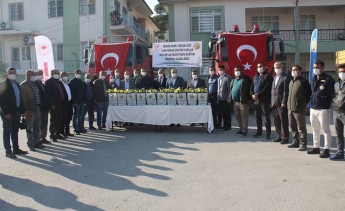 Mut'ta 13 Mahalleye 15 Bin Beyaz İncir Fidanı Dağıtıldı