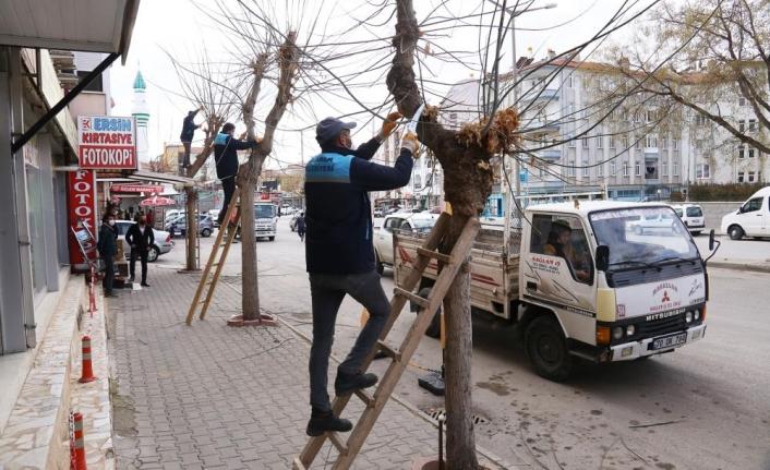 Karaman Belediyesi Ağaçları Budayarak Geri Dönüşüme Kazandırıyor