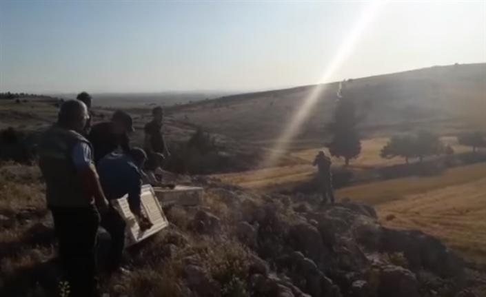 Karaman'da 1000 Adet Kınalı Keklik Doğayla Buluştu