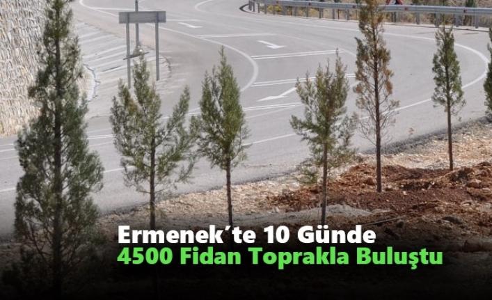 Ermenek'te 10 Günde 4500 Fidan Toprakla Buluştu