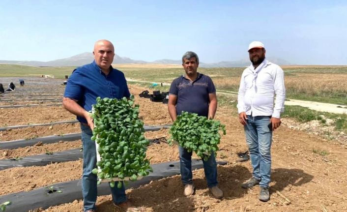 """Başkan Bayram: """"Karaman Sebze Üretim Merkezi Olacak"""""""