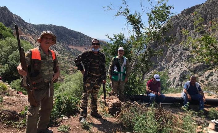 Karaman'da Sürek Avları Başladı