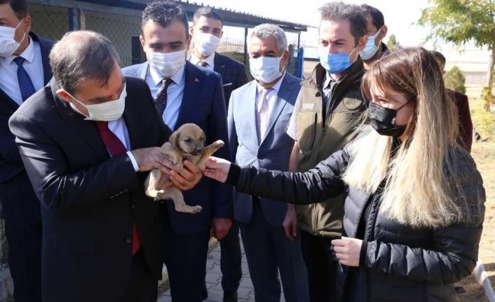 Vali Işık ve Başkan Kalaycı Hayvan Barınağını İnceledi