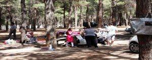 Piknikçilere Kötü Haber!