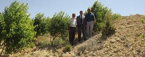 81 Ilde 81 Orman Kampanyasi Meyvelerini Veriyor