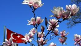 Nevruz Bayramı Kutlanacak