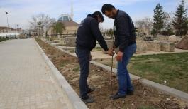 Mezarlıklarda Çevre Düzenlemesi Devam Ediyor