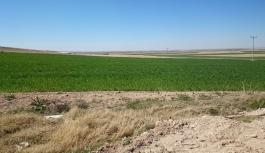 Eğilmez Köyünde Çiftçinin Su İsyanı
