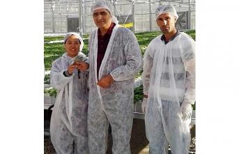 Konya Şeker, Patates Tohumluğuna El Attı, İthalatı...