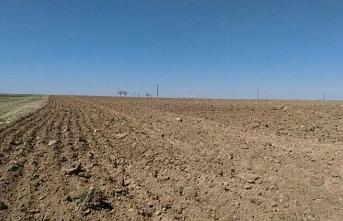 Atıl Tarım Arazileri Üretime Kazandırılıyor