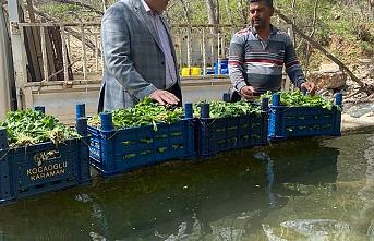 """Başkan Bayram: """"Gıda üretimi olmayan bir millet..."""
