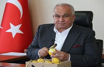 Erdemli Belediye Başkanı Tollu'dan 'Limon Tüketin' Çağrısı
