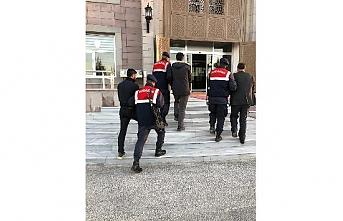 Ereğli'de Hayvan Hırsızları Jandarmanın Takibiyle...