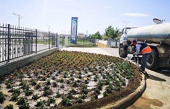"""Başkan Kalaycı: """"50 Bin Adet Çiçeği Toprakla Buluşturduk"""""""