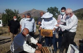 Karaman'da Bal Hasadı Gerçekleştirildi