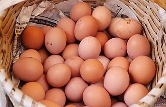 Karaman'da Fiyatı En Çok Artan Ürün Yumurta...