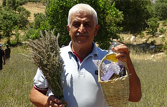 Emekliliğin Keyfini Lavanta Yetiştirerek Çıkartıyor