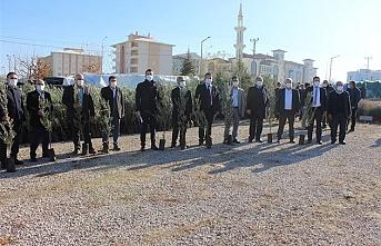 Karaman'da Zeytin ve Badem Fidanı Dağıtıldı