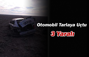Ereğli'de Otomobil Tarlaya Uçtu: 3 Yaralı