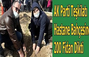 AK Partiden Hastane Bahçesine 200 Fidan