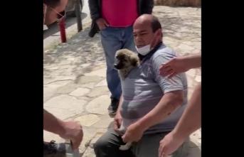 Su Sarnıcına Düşen Köpeği İtfaiye Kurtardı