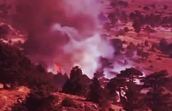 Sertavul Yaylasında Orman Yangını