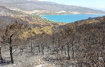 Silifke'de Orman Yangını Devam Ediyor