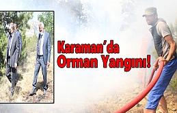 Karaman'da Orman Yangını Çıktı