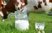 3 Günde 1 Bardak Süt İçiyoruz