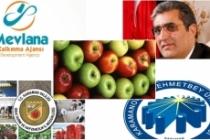 Elma Sektörü Ele Alınacak