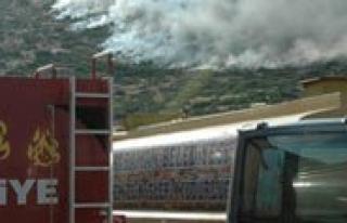 Karadag'daki Yanginda 2 Hektarlik Alan Kül Oldu