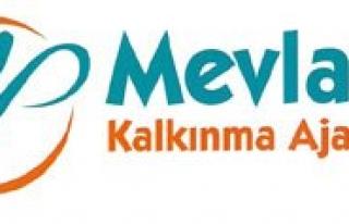Mevka, Konya- Karaman Bölgesinin Ihracat Yapisini...