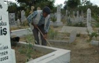 Mezar Kazarak Ek Gelir Elde Ediyorlar