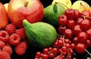 Taseli Bölgesinde Meyve Yetistiriciliginin Analizi...