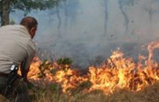 2013 Yilinda Karaman'da 39 Orman Yangini Çikti