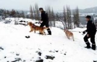 Karaman'da Karda Kaybolan Iki Kisiyi Jandarma Buldu...