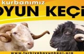 DKKY Birligi Baskani Osman Yesiltas: Bayram Için...