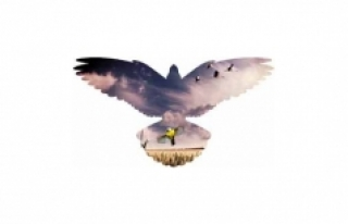 Uçun Kuşlar Uçun Karaman'a Doğru