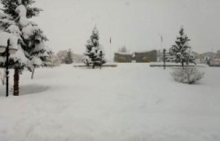 Karaman'da Kar Kalınlığı 85 Santimi Geçti