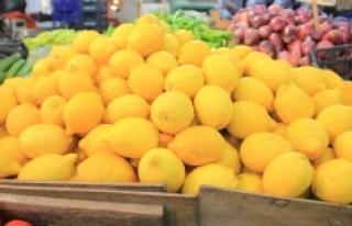 Karaman'da Fiyatı En Çok Artan Ürün Limon Oldu