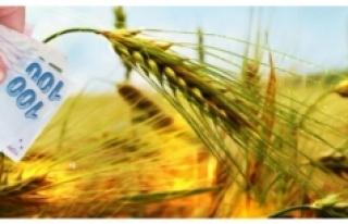 2017 Yem Bitkileri Desteği Ödemesi İcmalleri Askıda