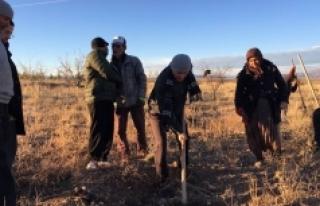 Vali Meral: Ağaçlandırma Çalışmalarına Destek...