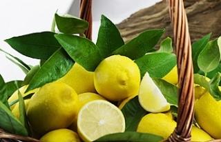 İlimizde Fiyatı En Çok Artan Limon Oldu