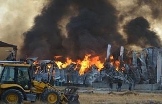 Ereğli'de Bisküvi Fabrikası Yangını