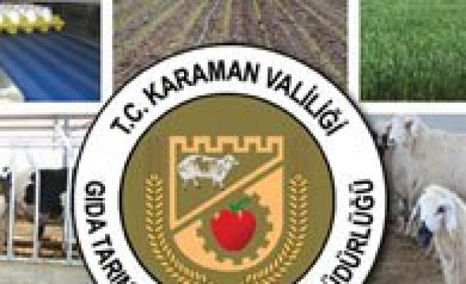 Yem Bitkileri Desteklemeleri Icmalleri Askida