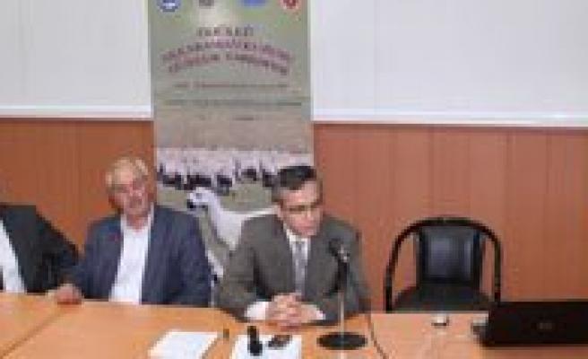 """KMÜ'de """"Karaman Koyunu Ve Sorunlari"""" Konulu Panel"""