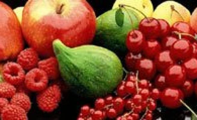 Taseli Bölgesinde Meyve Yetistiriciliginin Analizi Ve Gelecegi Paneli Bugün