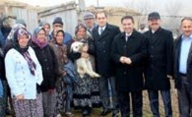 Ayranci Kaymakamligi 560 Koyun Dagitti